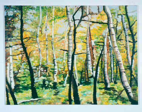 Birkenwald