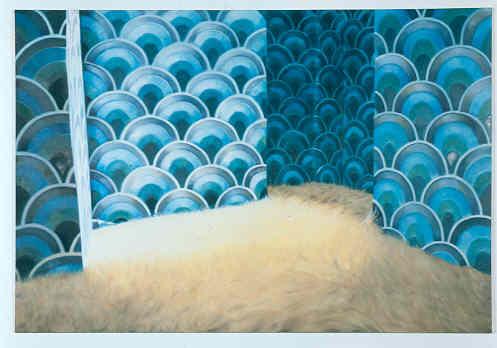 Blaue Tapete, Blonder Teppich