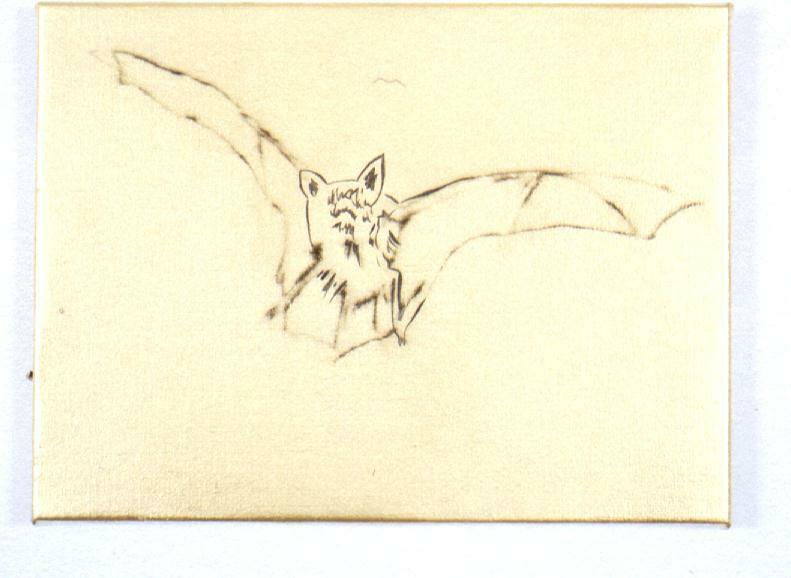 Bat (Flying)