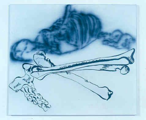 Knochen (Fuß)