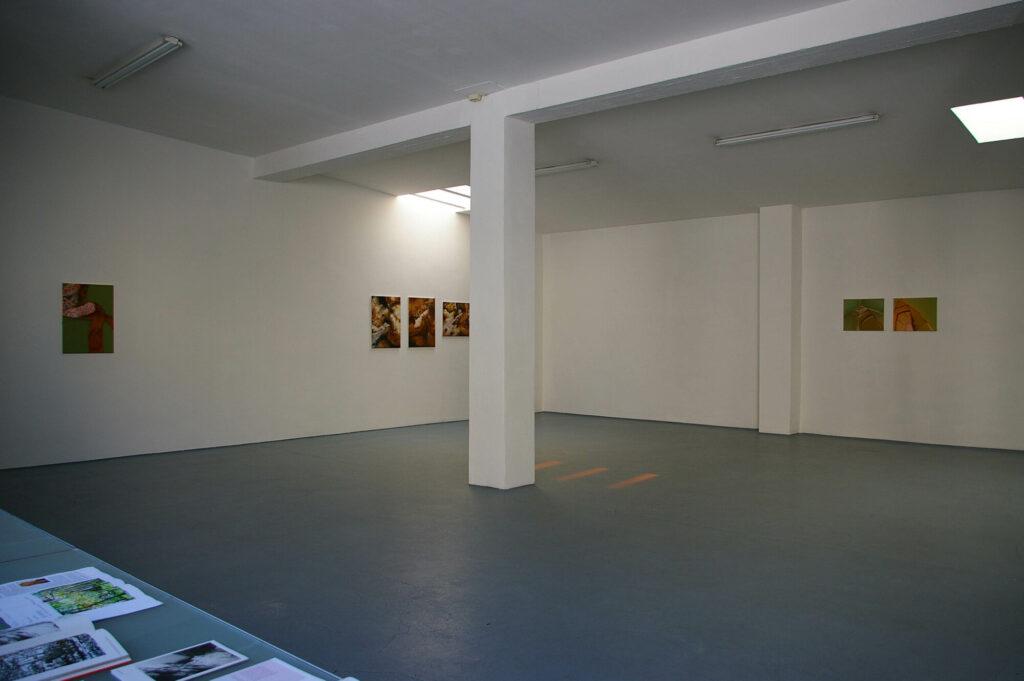Installationsansicht